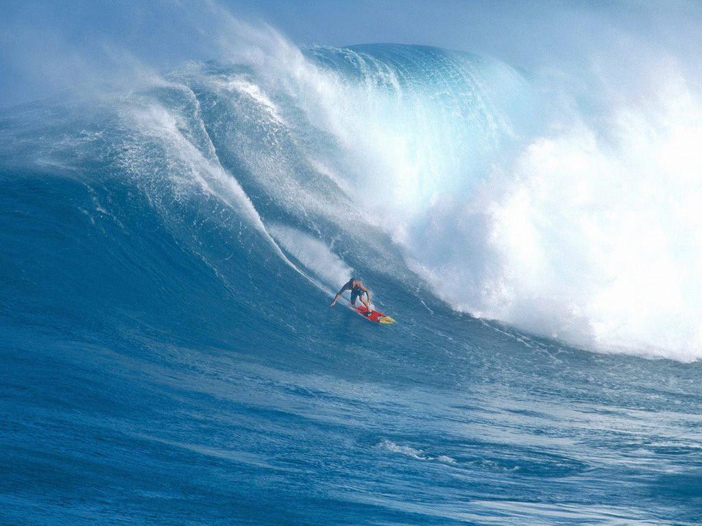 Windsurf – Yelken Kondüsyon Programı