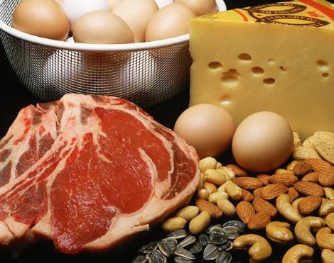 Protein alım miktarları