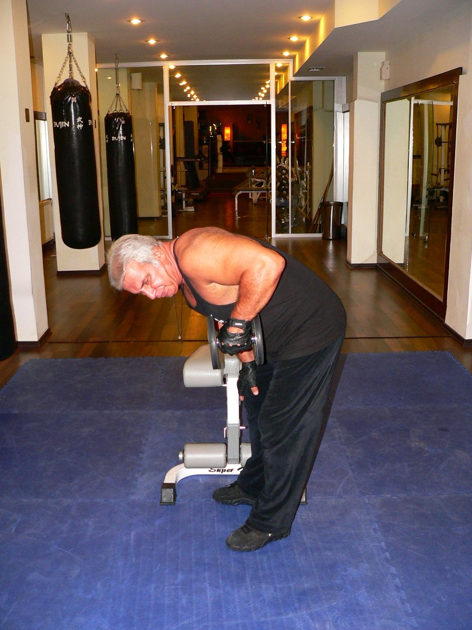Standing Bent Over One Arm Dumbbell Triceps Kick Back