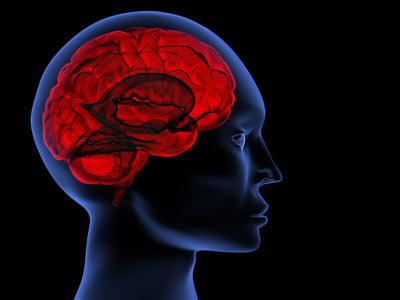 Beyninizi Koruyun