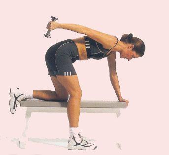 Arka Kol – Triceps Egzersizleri Listesi ve Anatomi