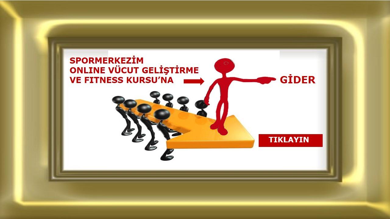 gider-big